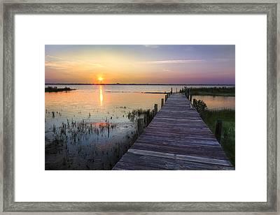Renewal Framed Print by Debra and Dave Vanderlaan