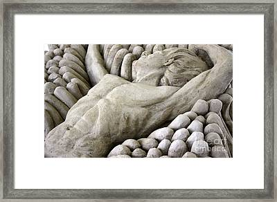 Rest Framed Print by Ted Wheaton