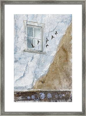Return Flight Framed Print by Carol Leigh