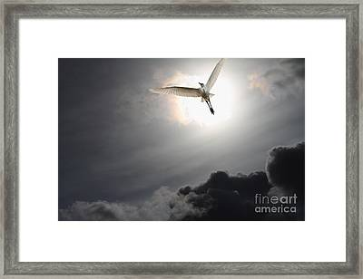 Return To Eternity Framed Print by Wingsdomain Art and Photography