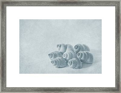 Return To Innocence Framed Print by Evelina Kremsdorf