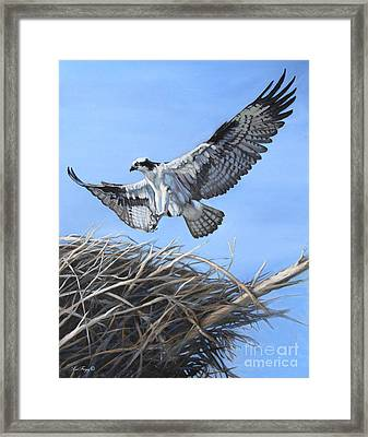 Return To The Nest Framed Print by Deb LaFogg-Docherty
