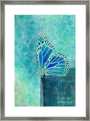 Reve De Papillon - S02a2 Framed Print by Variance Collections