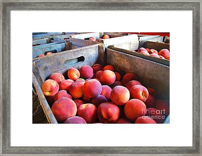 Rfm 43 Framed Print by TSC Photography Timothy Cuffe Jr