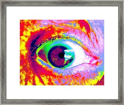 Rico's Eye Framed Print by Renate Nadi Wesley