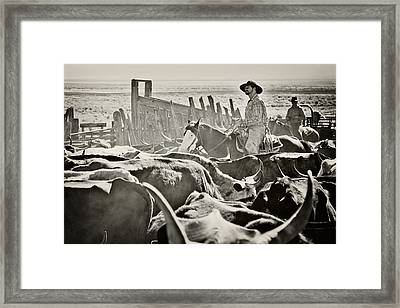 Riding Through The Herd Framed Print by Megan Chambers