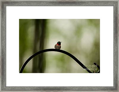 Right Here Waiting Framed Print by Venura Herath