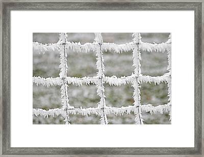 Rime Covered Fence Framed Print by Christine Till