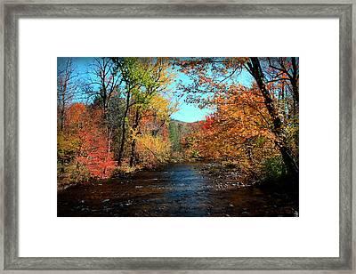 River Forever  Framed Print by Mark Ashkenazi