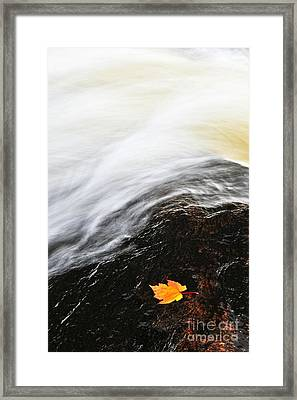 River In Fall Framed Print by Elena Elisseeva