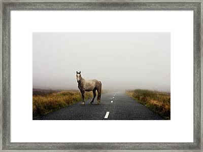 Road Framed Print by Deirdre Marie Photography