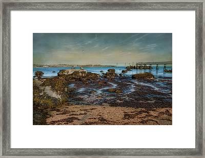 Rock Bottom Framed Print by Robin-lee Vieira