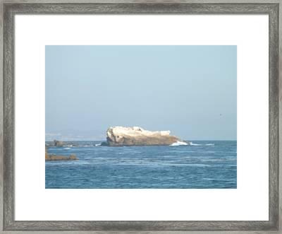 Rock On The Water Framed Print by Jamie Diamond