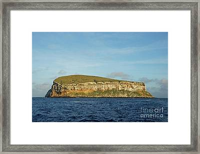Rocky Cliffs Of Darwin Island Framed Print by Sami Sarkis