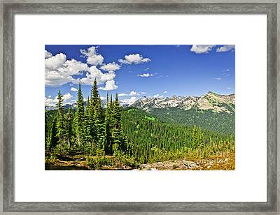 Rocky Mountain View From Mount Revelstoke Framed Print by Elena Elisseeva