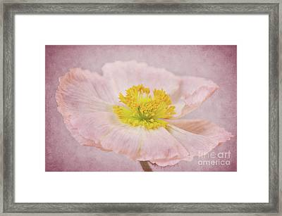 Romantico Framed Print by Angela Doelling AD DESIGN Photo and PhotoArt