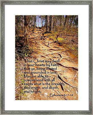 Rooted Path With Scripture Framed Print by Cindy Wright