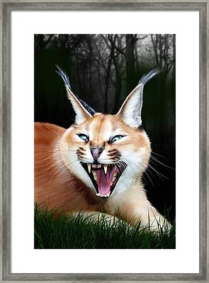 Rose Framed Print by Big Cat Rescue