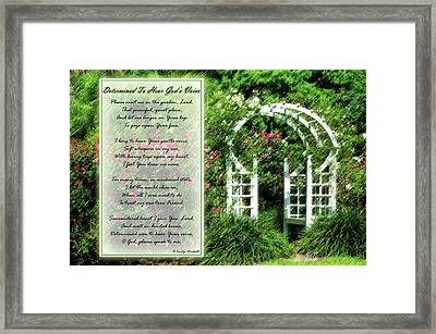 Rose Garden Framed Print by Carolyn Marshall