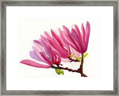 Rose Violet Magnolia Framed Print by Sharon Freeman