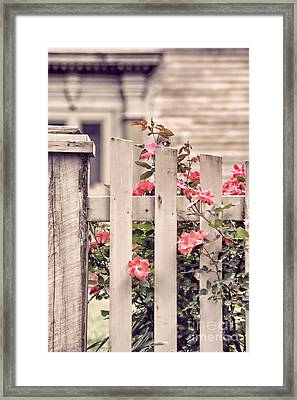 Roses At The Gate Framed Print by HD Connelly
