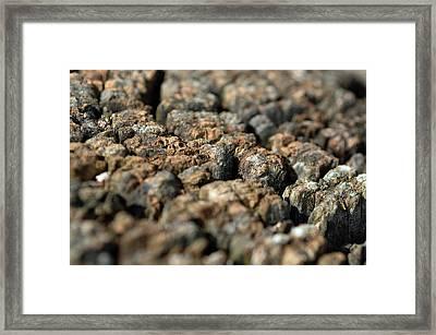Rough Terrain Framed Print by Lisa Phillips