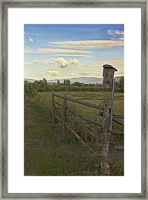 Rural Birdhouse On Fence Framed Print by Mick Anderson