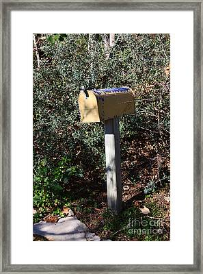 Rural Mailbox With Fading Yellow And Blue Paint Framed Print by Louise Heusinkveld