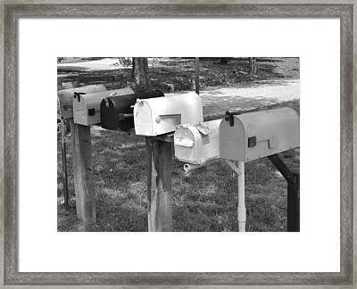 Rural Me Not Framed Print by Sharon Farris