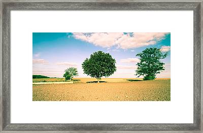 Rural Scene Framed Print by Tom Gowanlock