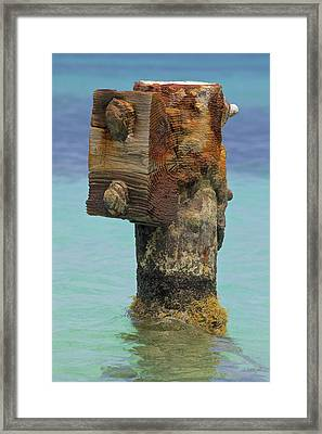 Rusted Dock Pier Of The Caribbean Iv Framed Print by David Letts