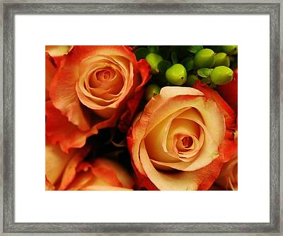 Rustic Roses Framed Print by Bruce Bley
