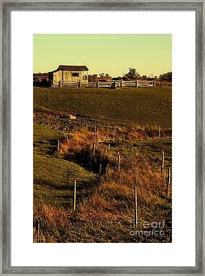 S Path Framed Print by Aimelle