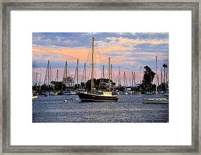 Safe Basin Framed Print by David Lee Thompson