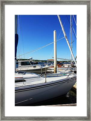 Sailboats Framed Print by Becca Brann