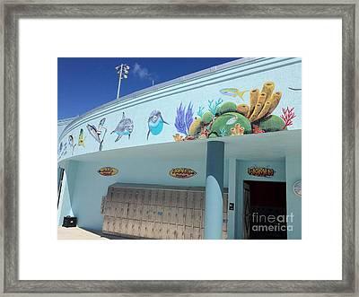 Sailfish Splash Park 4 Framed Print by Carey Chen