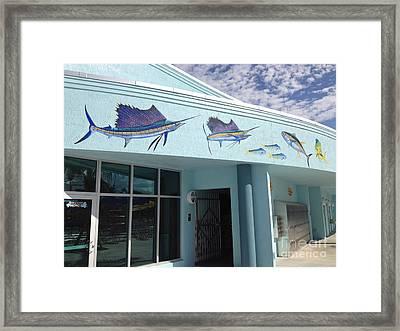 Sailfish Splash Park 5 Framed Print by Carey Chen