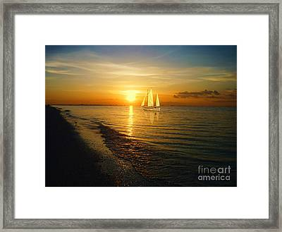 Sailing Framed Print by Jeff Breiman