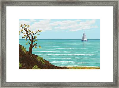 Sailing Framed Print by Tony Rodriguez