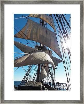 Sails And Sunshine Framed Print by L Jaye Bell