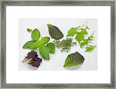Salad Greens And Spices Framed Print by Joana Kruse