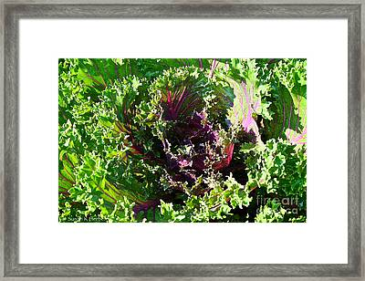 Salad Maker Framed Print by Susan Herber