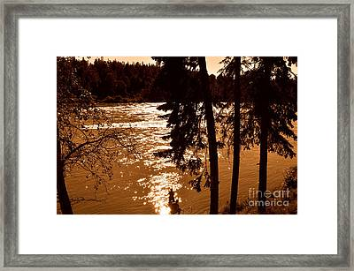 Salmon Is Running 2 Framed Print by Tanya  Searcy
