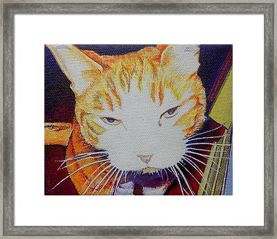 Sammy Boy Framed Print by Jeff Taylor