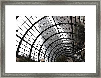 San Francisco Crocker Galleria - 5d17869 Framed Print by Wingsdomain Art and Photography