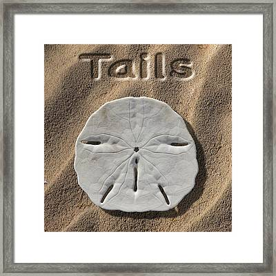 Sand Dollar Tails Framed Print by Mike McGlothlen