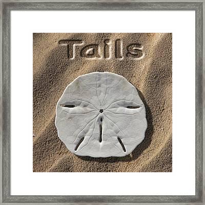 Sand Dollar Tails Framed Print by Mike McGlothlen