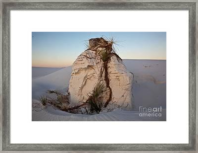 Sand Pedestal With Yucca Framed Print by Greg Dimijian