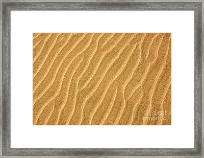 Sand Ripples Abstract Framed Print by Elena Elisseeva