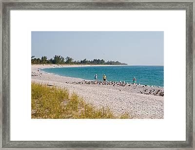 Sanibel Island Florida Summer Beach Framed Print by ELITE IMAGE photography By Chad McDermott